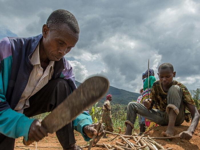 местные жители работают на земле