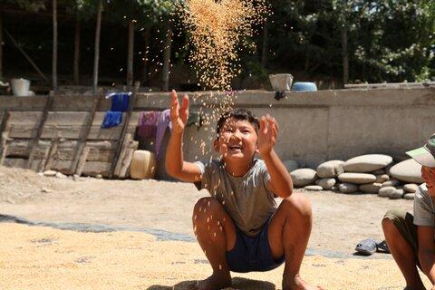 Всемирная продовольственная программа в Кыргызстане берет первенство в поддержке малых фермеров