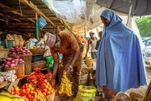 Опасное сочетание резкого роста цен на продукты питания и конфликтов увеличивает голод втри раза в Западной Африке.